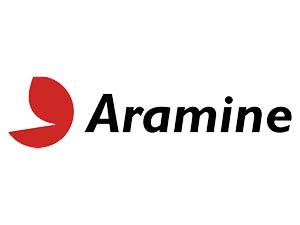 aramine-300x225-2