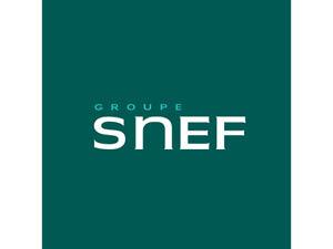 snef 300x225